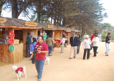 Feria Artesanal El Totoral